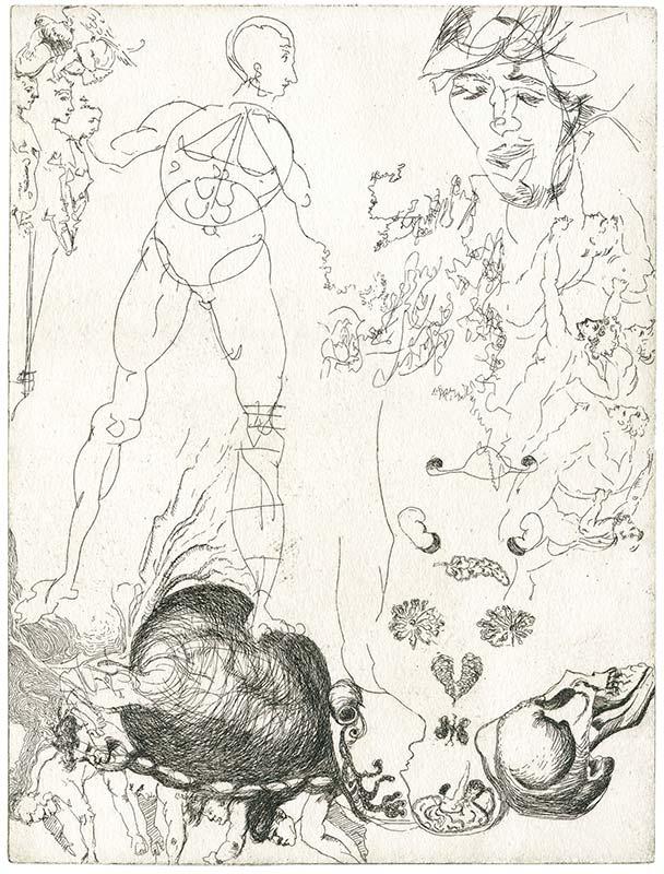 Proportionsstudie nach Dürer, männlicher Akt, weibliche Organe, Schädel, mit Zeichnungen nach Michelangelo, Radierung